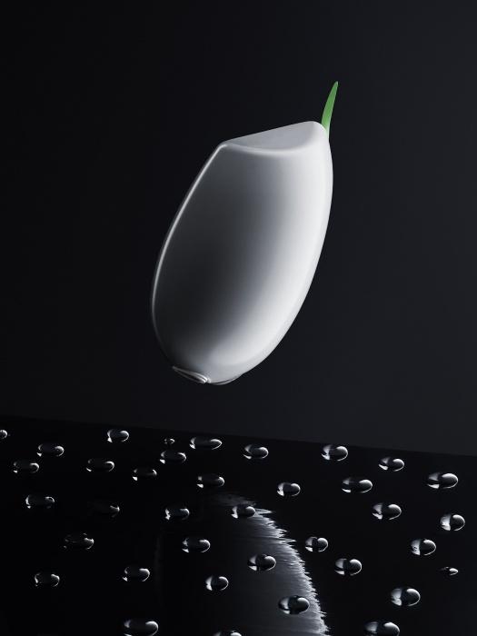Tsumari-Kome Koshihikari rice